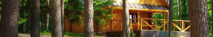 Porady i inspiracje dotyczące drewna #drewno #porady #inspiracje