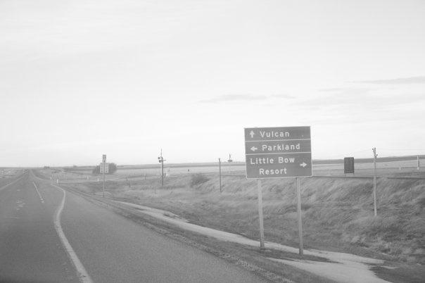 B&W near Vulcan Alberta