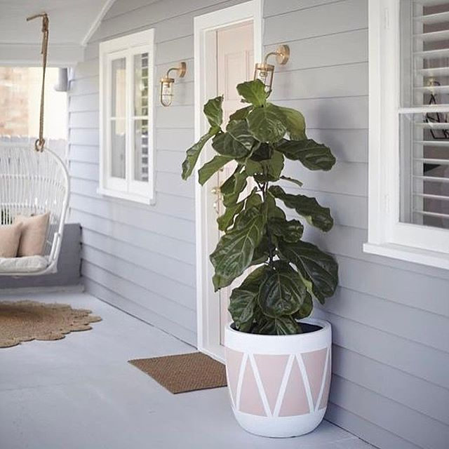 • Nothing prettier to greet your guests with in my eyes than a Beautiful hand painted Pot + Greenery, instantly makes me smile!! • SHOP our huge collection ONLINE NOW!! + yes guys, we ship these beauties AUSTRALIA WIDE ✔️✔️ • www.myndinteriors.com.au • via @threebirdsrenovations xoxo