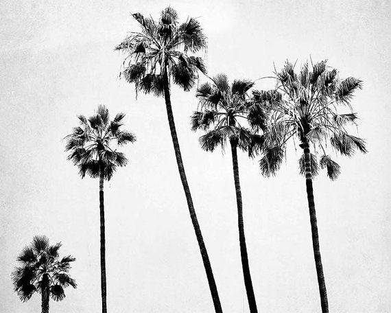 BreeMadden   Noir et blanc photographie, gris blanc,