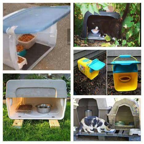 DIY colony cat feeder