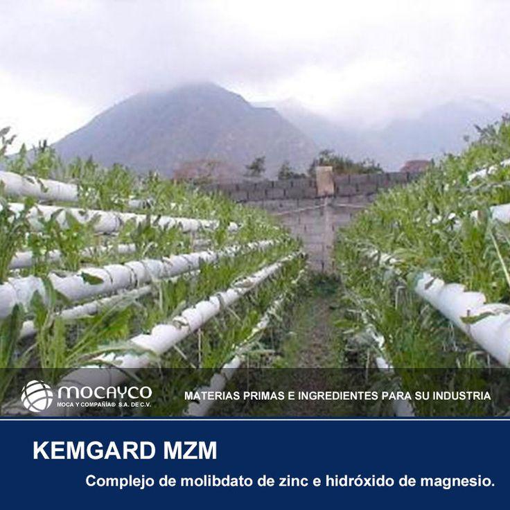 KEMGARD MZM. Complejo de molibdato de zinc e hidróxido de magnesio.