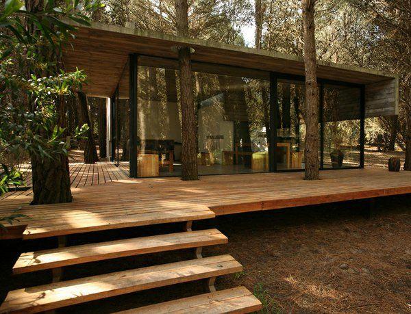 la maison en bois avec patio au milieu de la foret
