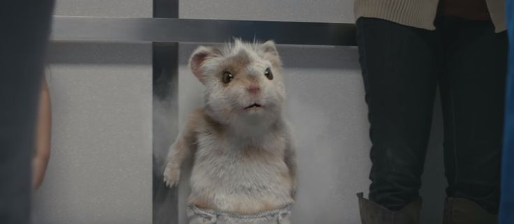 Kia Turbo Charges The Soul With a New Baby Hamster Commercial Featuring The Motorhead Song 'Ace of Spades'