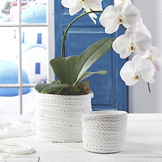 White Cement Coiled Rope Planters