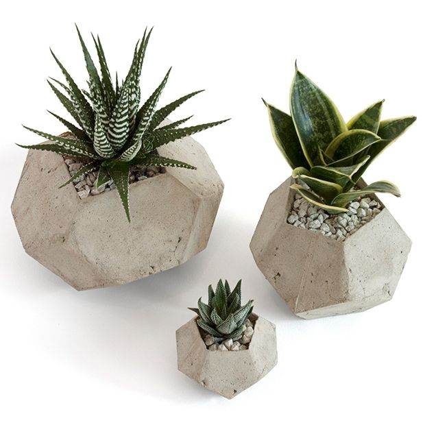 concrete planters (trouva)