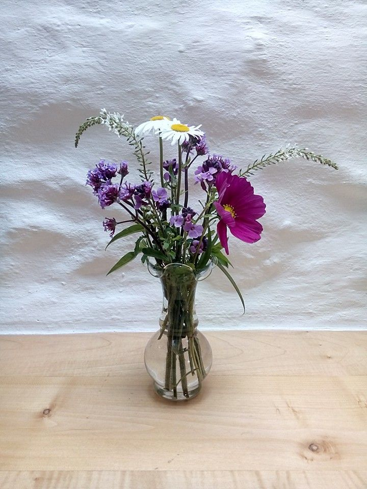 Stones Cottages, Pembrokeshire. Today's home grown flowers to welcome our new guests at Stones Cottages. Grown peat free by @shani_lawrence http://www.organicholidays.com/at/2780.htm