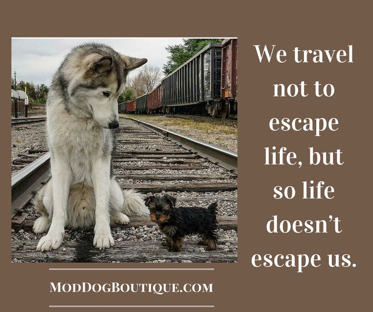 Travel Escape Quotes: 10 Best MaXiNe Images On Pinterest