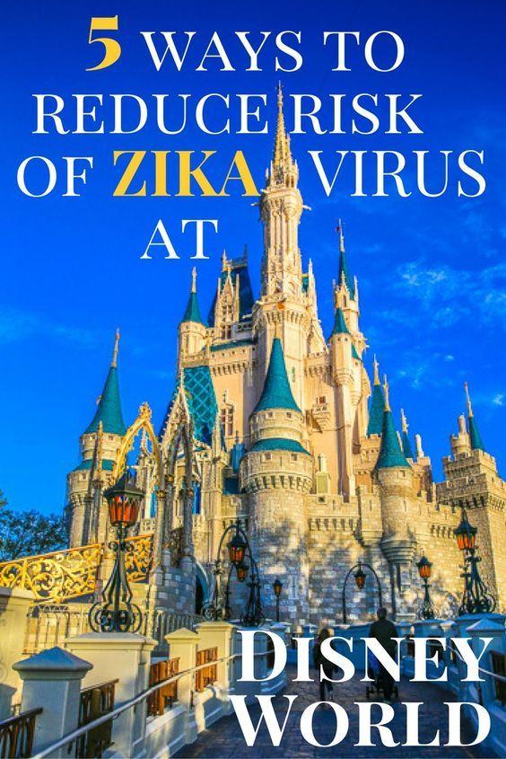 Disney World & Zika Virus: ways to protect your family and reduce mosquito bites in Orlando.