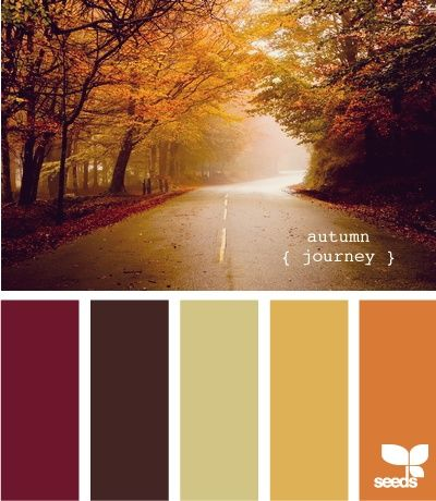 Autumn Journey. These are the colors we're using in the living room and adjoining kitchen. I actually took these colors from a leaf I found in the forest behind our house. I want to add a green and teal for use in the kitchen.