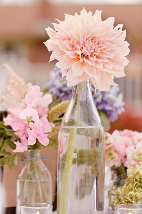 how cool and cheap would this be? start saving up glass bottles (especially from all the showers and parties before your wedding) and stick one or two flowers in the bottles. maybe 3 or 4 bottles per table. easy, cheap and recyling!!