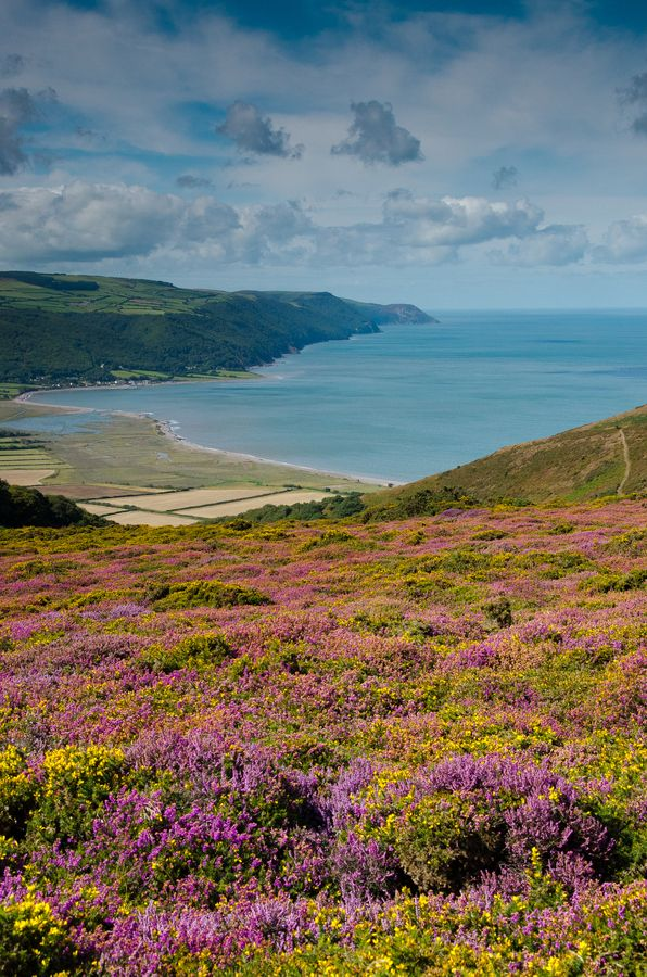 Porlock Bay and the Exmoor coast, Somerset, England