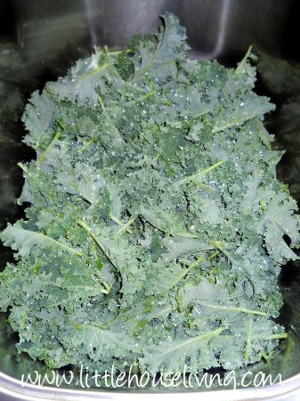 Freezing Kale and How to Store Kale