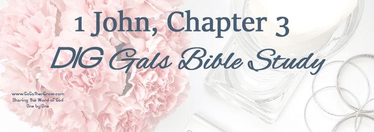 DIG Gals Bible Study: 1 John, Chapter 3