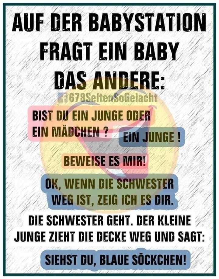 Pin Von Mia Auf Lustiges Witzige Spruche Lustige Spruche Lebensweisheiten Lustig