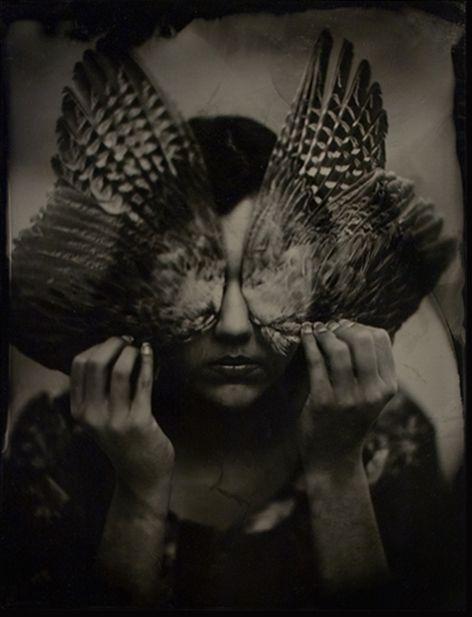 """"""": Francescawoodman, Birds Wings, Vintage Prints, Wet Plates, Butterflies Wings, Francesca Woodman, Feathers, Shadows, Photography"