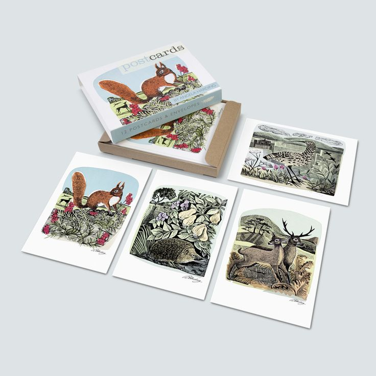 Red Squirrel and Wall Flower Postcards - Angela Harding  - 1