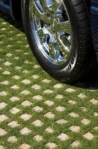 "Drivable grass ~ create a ""green"" driveway using porous concrete grids that are planted with a ground cover between the cement 'pavers'.  A creative & environmentally friendly storm water management solution."
