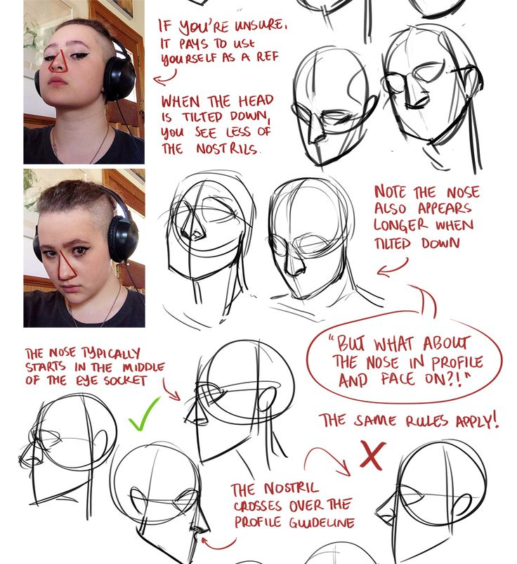 Character Design Tutorial Free : Best character anatomy nose images on pinterest