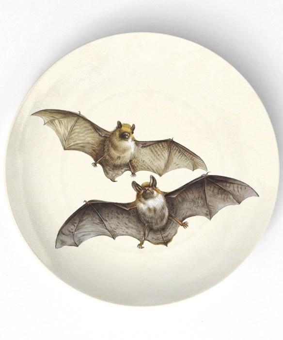 bat plate #kitchen