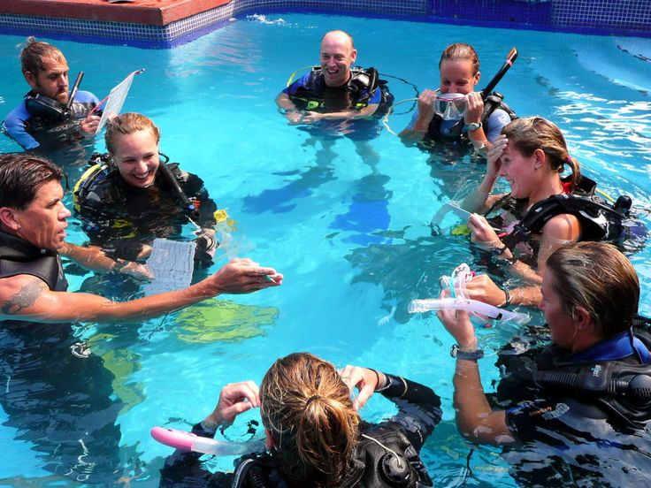 Career paths in diving--become a professional with eco dive center. 310-398-5759