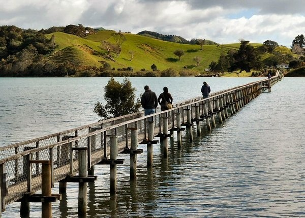 Whananaki Foot Bridge, Northland, New Zealand