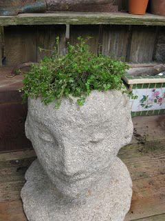 Soil Sister Of The San Joaquin Head Gardeners Diy Planter