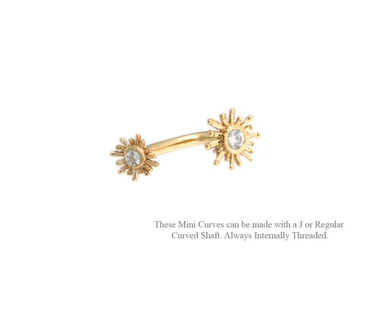 if i get this i will pierce my rook again!