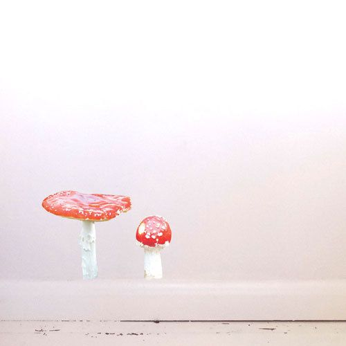 Toadstools Wall Decal Fly Agaric by #JuneFoxStudio on Etsy
