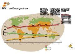 Actividades: Nueva luz sobre un tesoro enterrado - Año Internacional de la Papa 2008