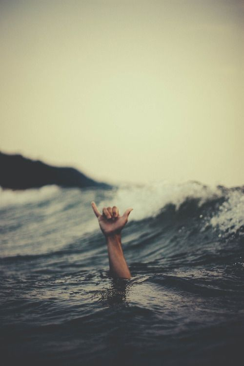 Happy Wednesday!   Jump In The Ocean & Enjoy Life