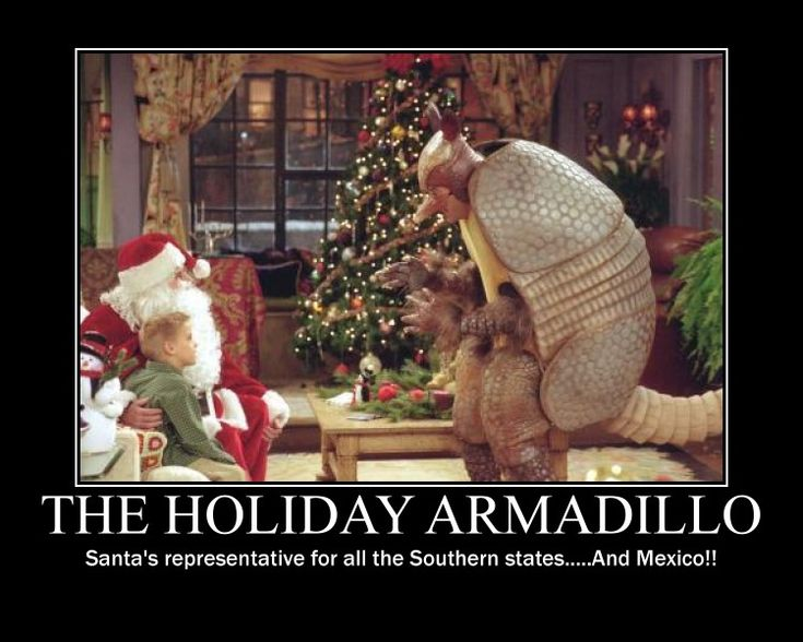 The holiday armadillo! haha i hope you see this after spending xmas is mexico! @Maria Canavello Mrasek Zavala