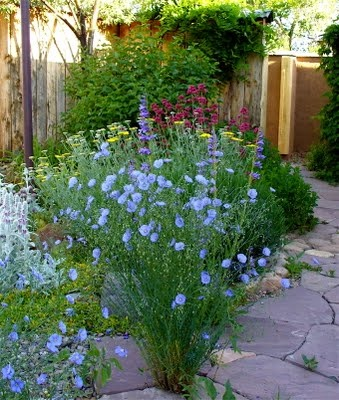 53 best zeriscaping ideas images on pinterest backyard ideas yard design and diy landscaping for Secret garden colorado springs