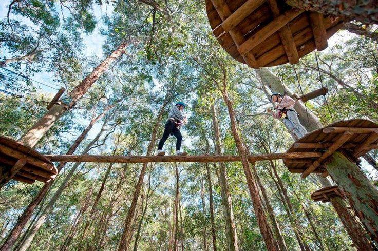 Top 5 Non-Netflix Activities in Sydney - Xplore Sydney