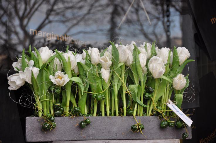 tulip arangement