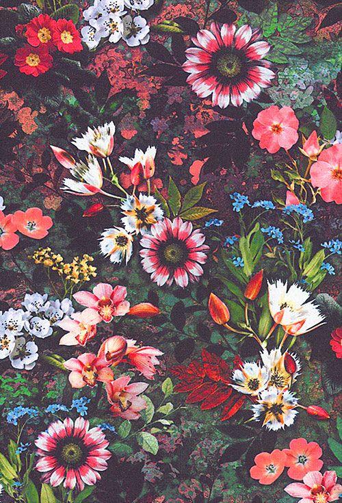 Reverie - Floral Fantasy - Warm Black - DIGITAL PRINT - Quilt Fabrics from www.eQuilter.com