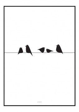 Illustration med fugle - køb den som plakat hos designerblog.dk