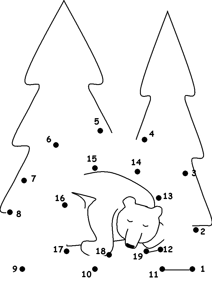 Connect the dots bear colouring page