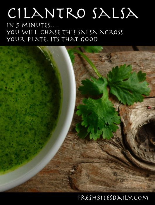 Cilantro Salsa (Use it in soups, vegetable dip and on bread)