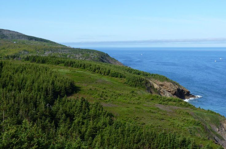 http://www.novascotia.com/see-do/outdoor-activities/cape-mabou-highlands-hiking-trails/1818