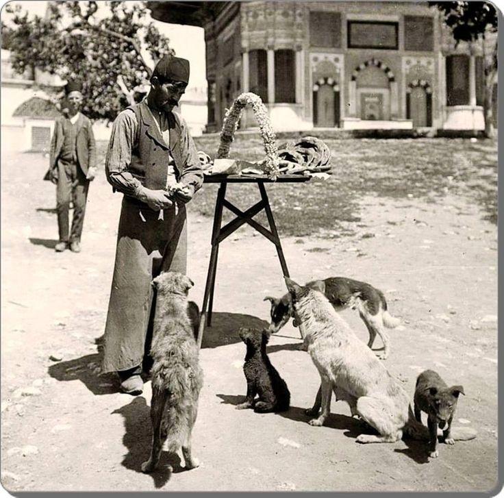 Simitlerini sokak köpekleriyle paylaşan bir simitçi / Sultanahmet - 1880 ler pic.twitter.com/8Lb77vRSgZ