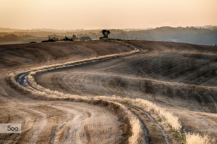 Harvest by Giovanni Volpe on 500px