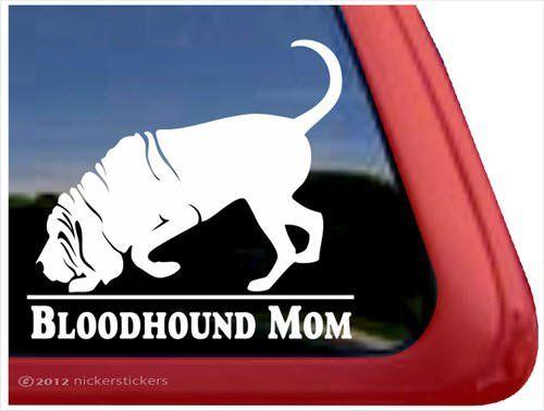 Bloodhound Mom ~ Bloodhound Vinyl Window Auto Decal Stick... https://www.amazon.com/dp/B007URACUY/ref=cm_sw_r_pi_dp_x_vFZhyb996GGZM