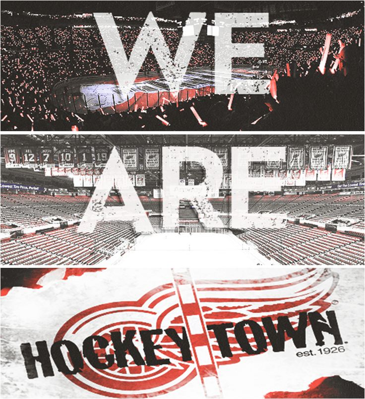We love us some Detroit Red Wings. On that playoff hunt--Let's Go Red Wings!