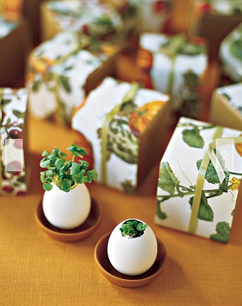 Wedding favors that grow...from Martha Stewart