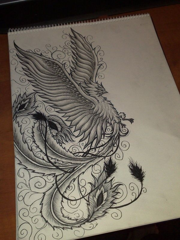 Phoenix Tattoo,  Love the art work! @Kimberly Peterson Peterson Shepherd here's an idea for you