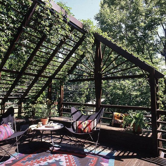 Section Your Shade Build an inexpensive, rustic pergola that can support…