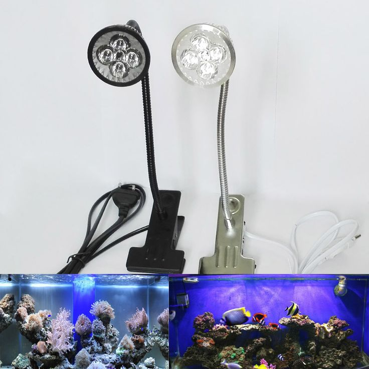 ==> [Free Shipping] Buy Best LED Aquarium Lighting AC 85265V Fish Tank Illumination Flexible Metal Tubing Clip & Switch Aquarium Lights Online with LOWEST Price | 32816319342