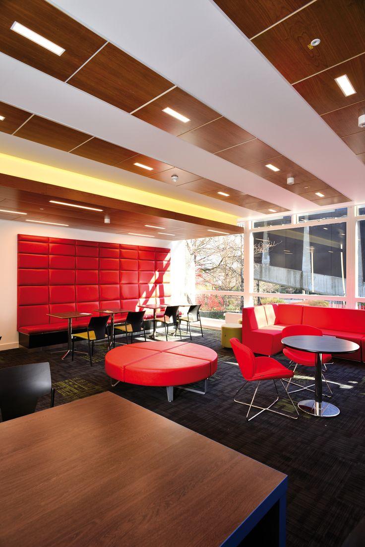 University of Edinburgh, Armstrong, sufity podwieszane, sufit akustyczny, ceiling, acoustic, edukacja