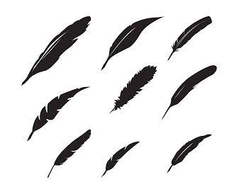 Des plumes... ~ KLDezign les SVG cameo silhouette
